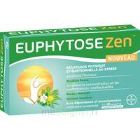 Euphytosezen Comprimés B/30 à Paray-le-Monial