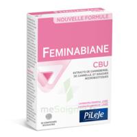 Pileje Feminabiane Cbu 30 Comprimés Bicouches à Paray-le-Monial