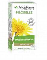 Arkogélules Piloselle Gélules Fl/45 à Paray-le-Monial