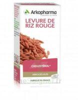 Arkogélules Levure de riz rouge Gélules Fl/45 à Paray-le-Monial