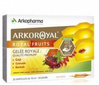 Arkoroyal Royal'Fruits Gelée royale Goji Grenade Baobab Solution buvable 20 Ampoules/10ml à Paray-le-Monial