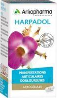 ARKOGELULES HARPAGOPHYTON Gélules Fl/150 à Paray-le-Monial