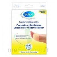 Scholl Coussin plantaire douleurs métatarsales T2 à Paray-le-Monial