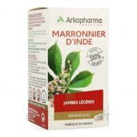 ARKOGELULES Marronnier d'Inde Gélules Fl/150 à Paray-le-Monial