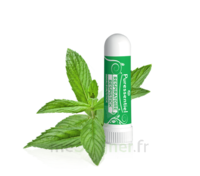 Puressentiel Respiratoire Inhaleur Respiratoire aux 19 Huiles Essentielles - 1 ml à Paray-le-Monial