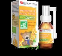 Forte Pharma Propolis bio Spray junior 15ml à Paray-le-Monial