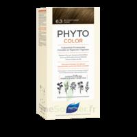Phytocolor Kit Coloration Permanente 6.3 Blond Foncé Doré à Paray-le-Monial