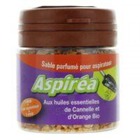 Aspiréa Grain pour aspirateur Cannelle Orange Huile essentielle Bio 60g à Paray-le-Monial