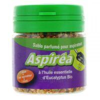 Aspiréa Grain pour aspirateur Eucalyptus Huile essentielle Bio 60g à Paray-le-Monial