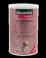 Biocanina Lait poudre maternisé B/400g à Paray-le-Monial