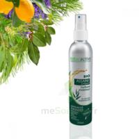 Naturactive Assaini'spray 200ml à Paray-le-Monial