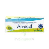 Boiron Arnigel Gel T(alumino-plastique)/45g à Paray-le-Monial
