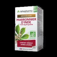 Arkogélules Marronnier D'inde Bio Gélules Fl/45 à Paray-le-Monial