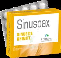 Lehning Sinuspax Comprimés à Croquer 3plq/20 à Paray-le-Monial